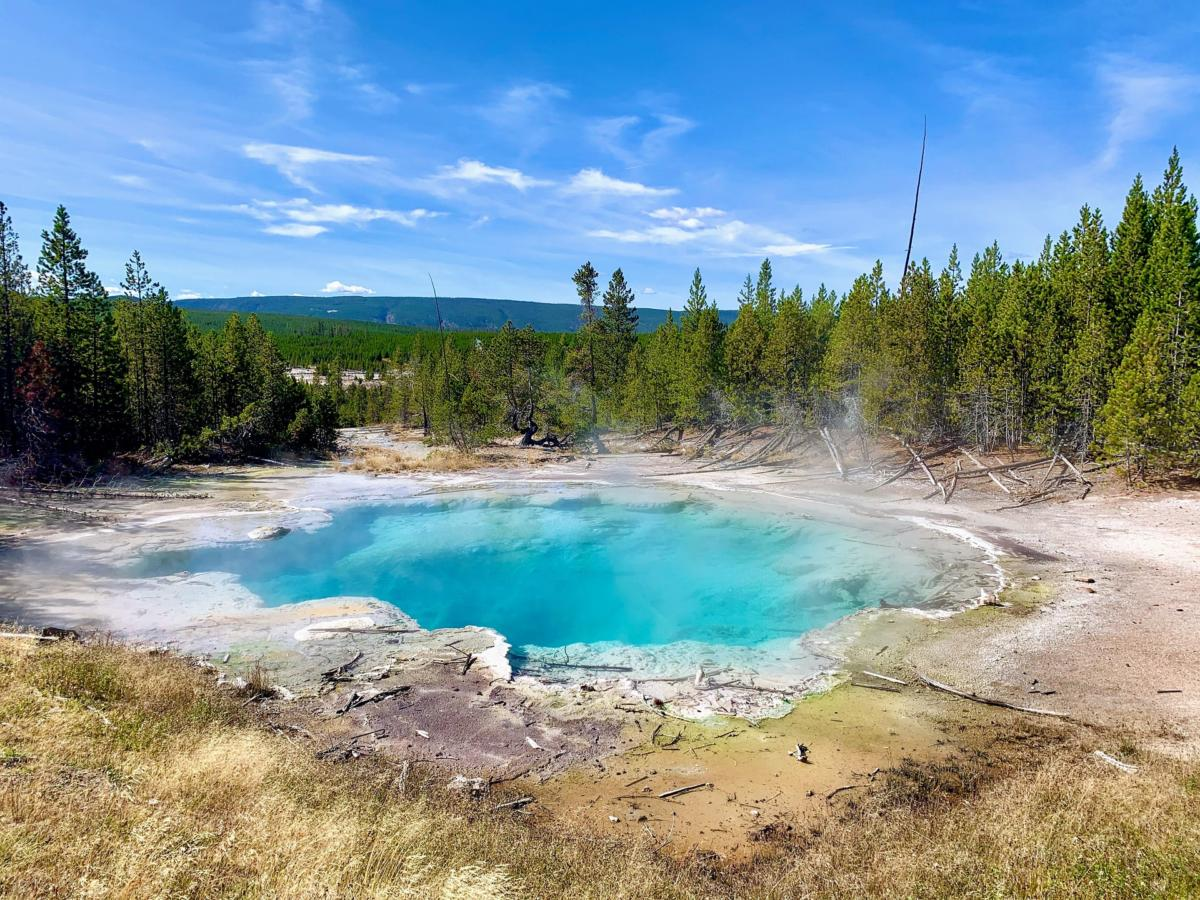 Have you visited Yellowstone National Park in the last 10 years?