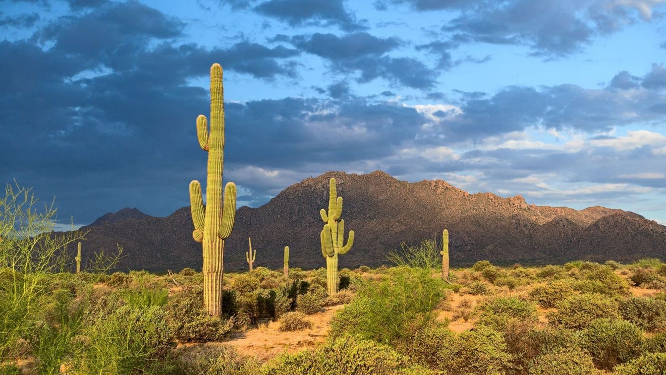 Try this outdoors overnight getaway you don't have to leave Phoenix to enjoy. Here's how