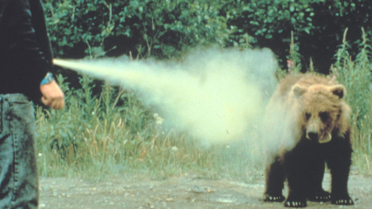 Bear and wasp spray: Good or bad idea for self-defense?