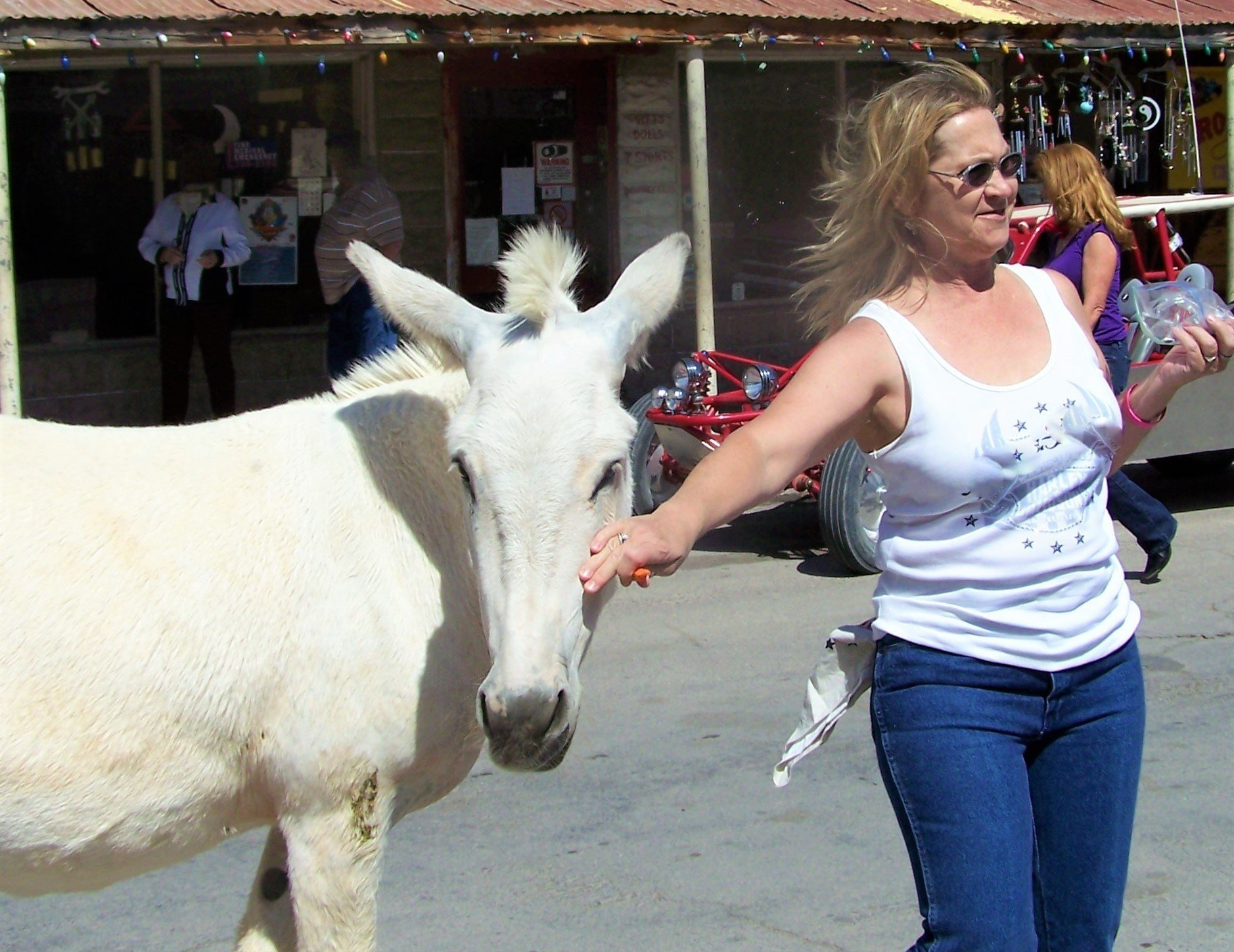 How to Spend a Day in Oatman, Arizona