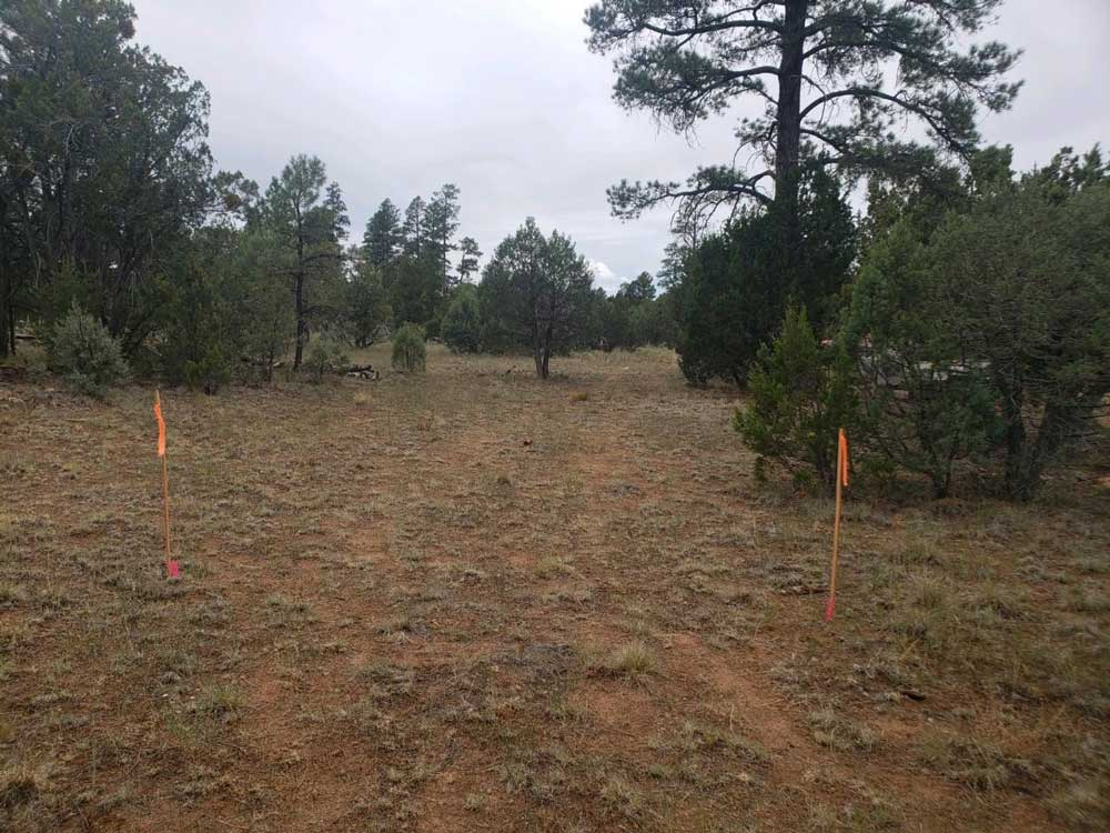 Building an RV park: We can see the camping spots!