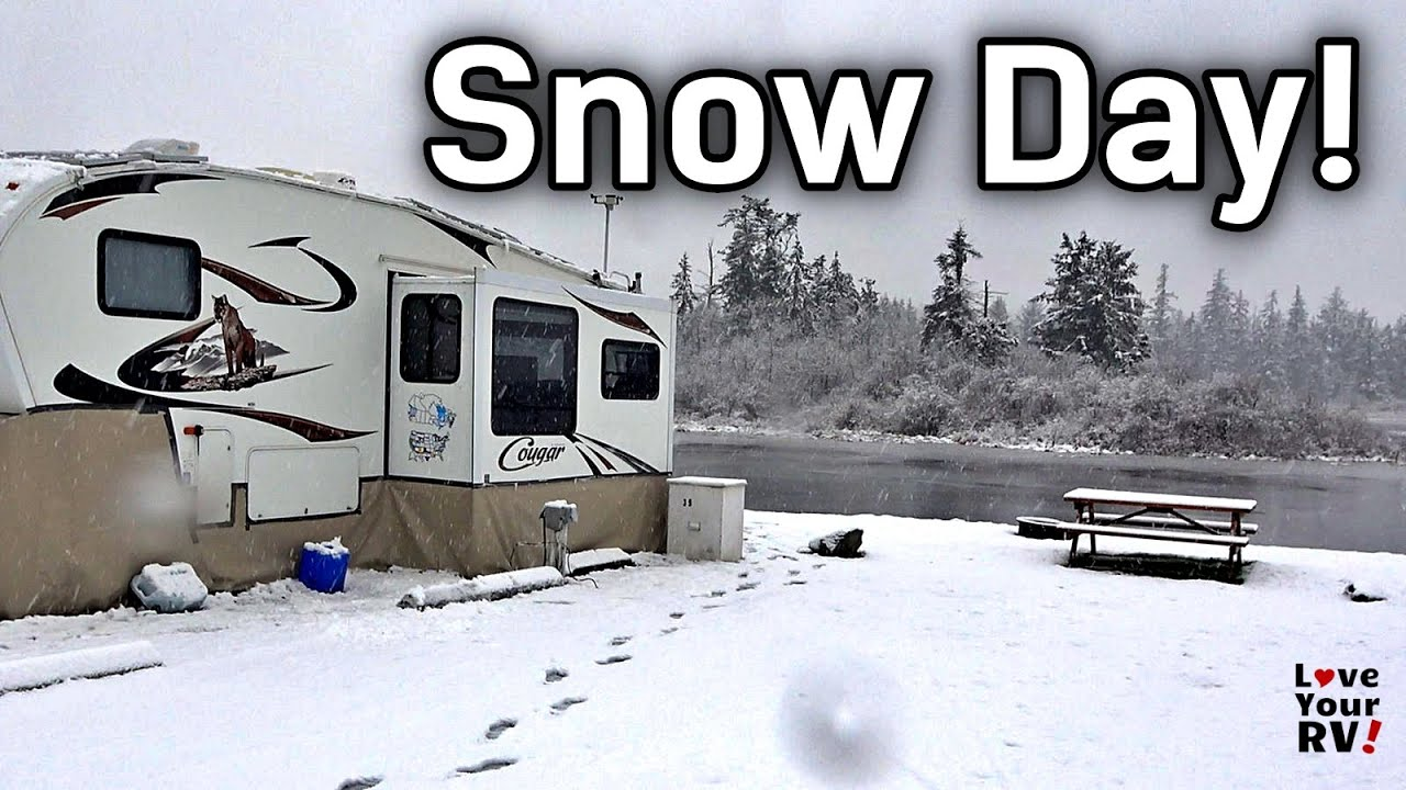 Scenes from the First Big Snow Day of the Winter - Campbell River Estuary Jan 24th, 2021