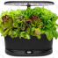 The AeroGarden Is the Perfect Gift for an Eco-Conscious Apartment Dweller and It's 30% off Right Now