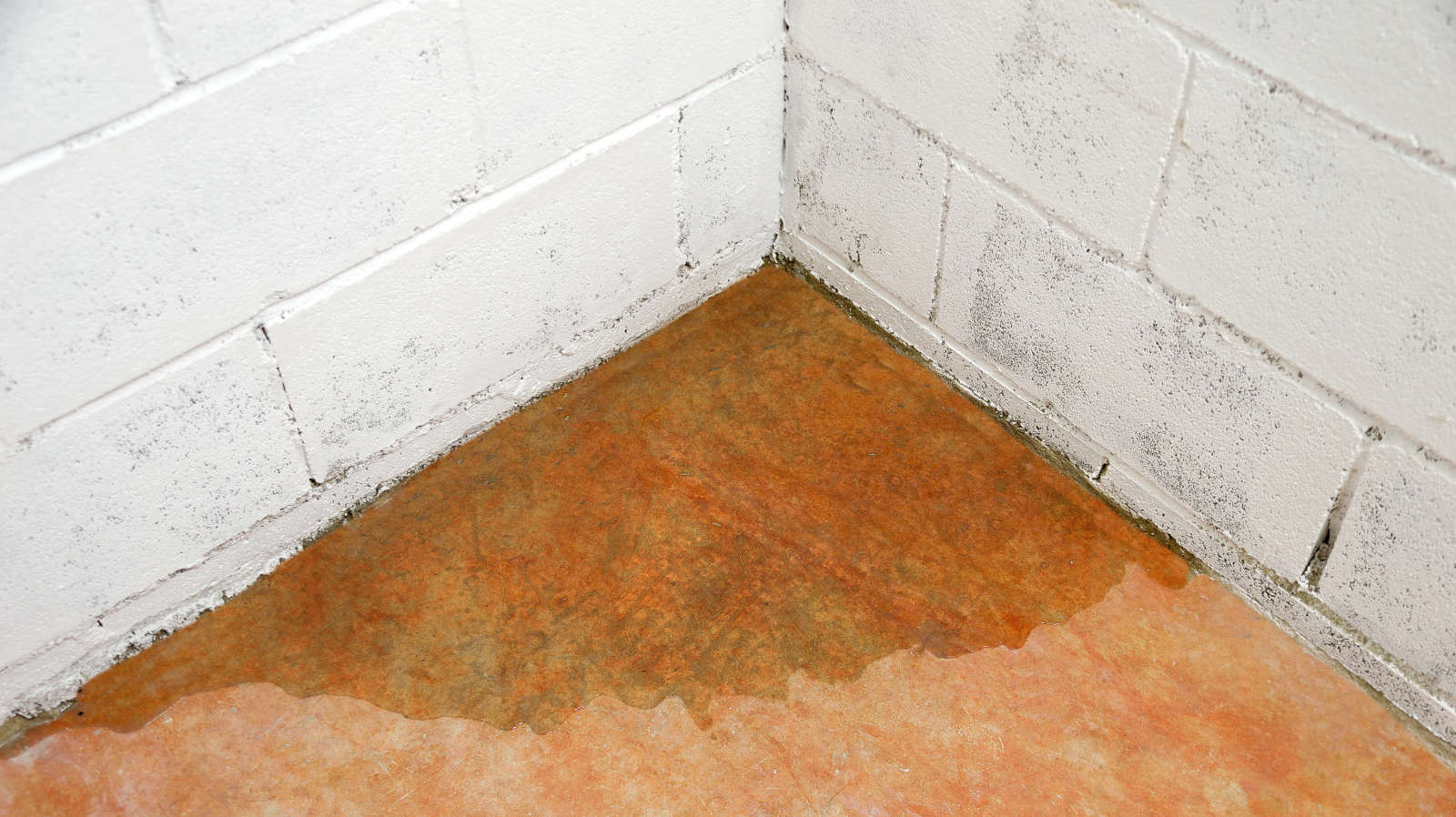 How to Keep Your Basement from Flooding When Snow and Ice Start to Melt